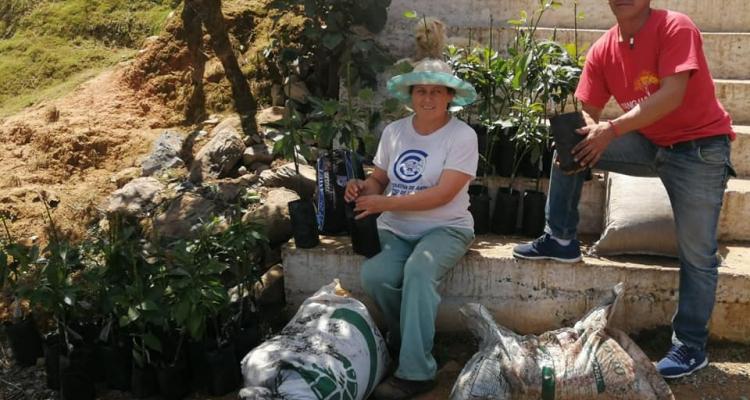 ENTREGA DE PLÁNTULAS DE AGUACATE E INSUMOS AGRÍCOLAS A PRODUCTORES LOCALES.
